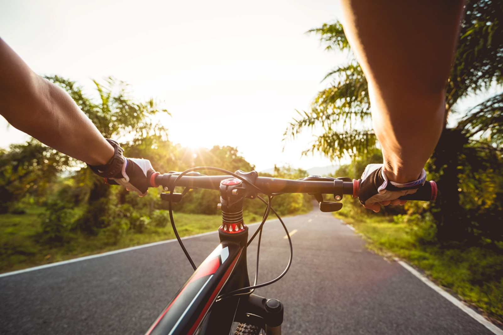 Chiropractic Care for Recreational Cyclists